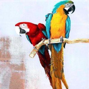 Schilderij twee papegaaien 100x100