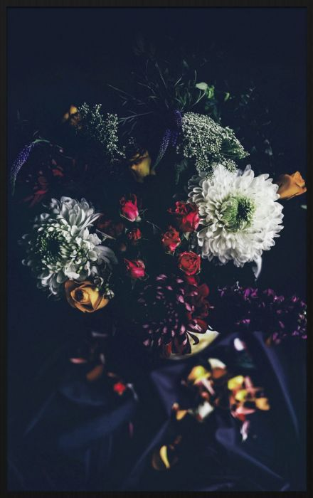 Bloemen Schilderijen: Bosbloemen Zwart Achtergrond Wandkraft Forex Collectie