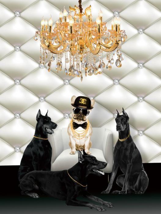 Dieren Schilderijen: Glas schilderij Chanel en vier honden 60x80