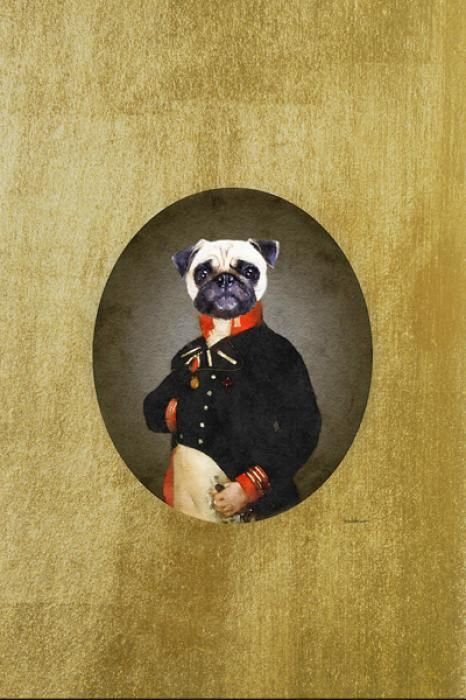 Dieren Schilderijen: Mens Mopshond Goudfolie Glas Schilderij 60x80