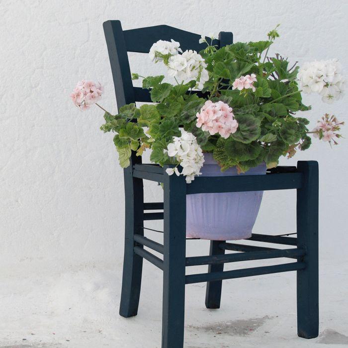 Bloemen Schilderijen: Hortensia's Bloemen Pot Stoel Dibond Collectie Wandkraft