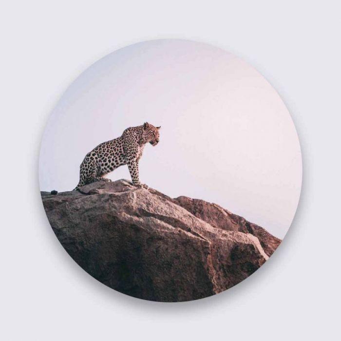 Dieren Schilderijen: Wildlife Collectie Wandkraft Panter Pure Metal Schilderij