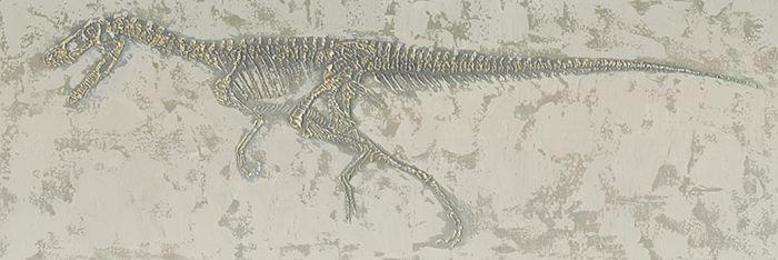 Dieren Schilderijen: Schilderij Dinosaurus Raptor Skelet 150x50