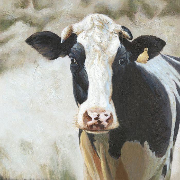 Dieren Schilderijen: Schilderij Zwart Witte Koe 90x90