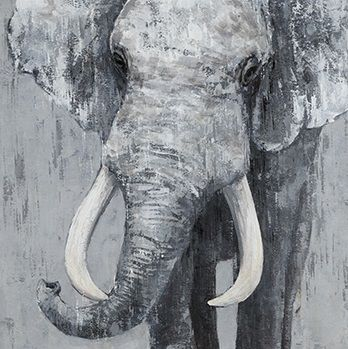 Dieren Schilderijen: Grijze Olifant Schilderij