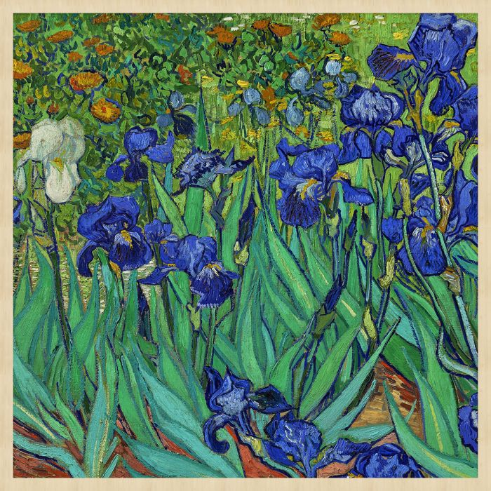 Bloemen Schilderijen: Irissen Forex Schilderij Wandkraft Collectie