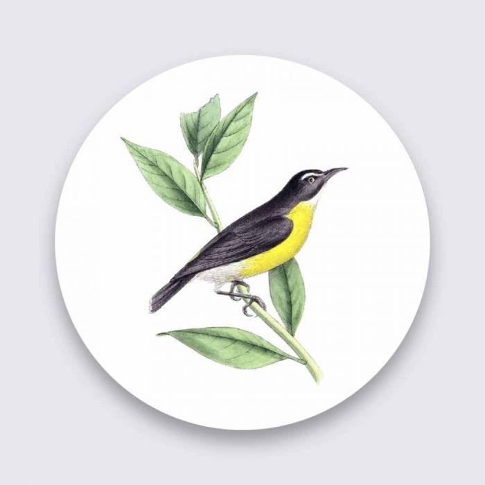 Dieren Schilderijen: Gele Kwikstaart Bright Wings Collectie Wandkraft Schilderijen