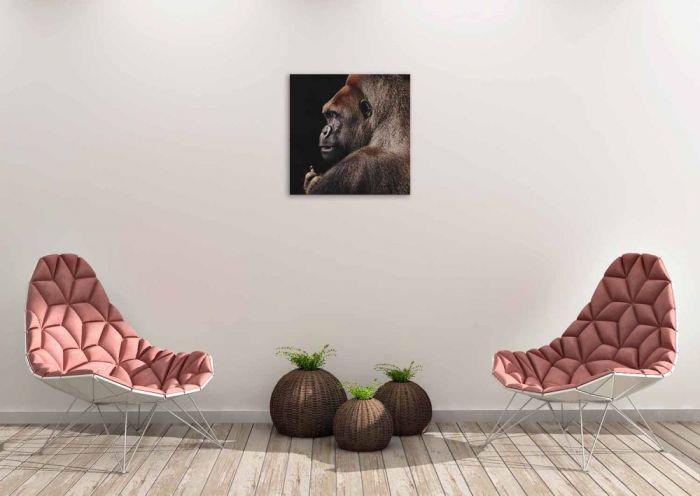Dieren Schilderijen: Gorilla Wildlife Collectie Wandkraft Schilderijen 74x74