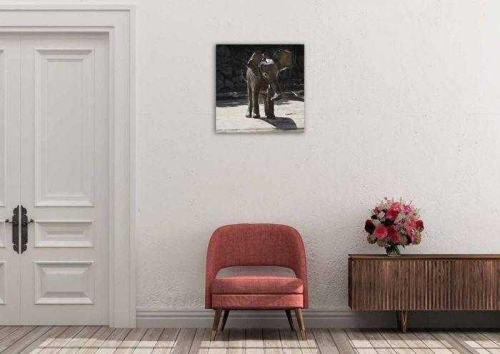 Dieren Schilderijen: Kalf Olifant Wildlife Dibond Collectie Wandkraft 74x74