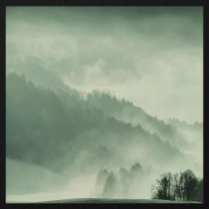 Forex schilderij winter wonders 004 met zwarte baklijst