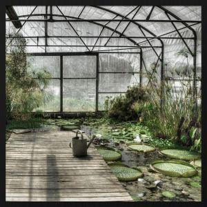 Forex schilderij botanical stories 014
