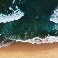 Wandkraft Art Of Nature Collectie Strand Zee Emerald Groen